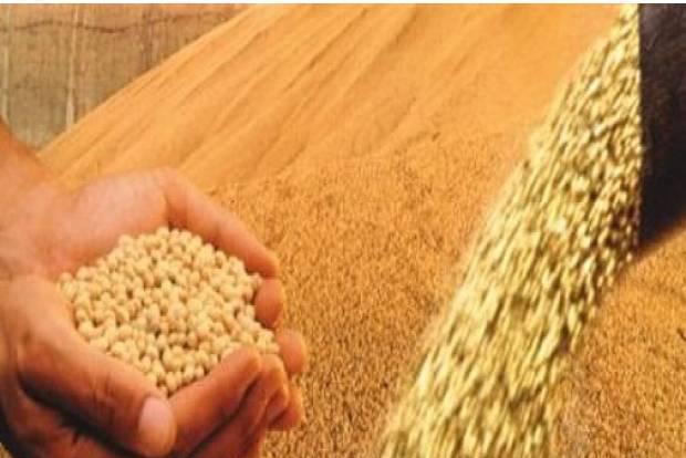 Fazenda agrícola - pouso alegre - mg (6193)