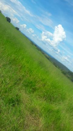 Fazenda localizada no município de artulândia-go