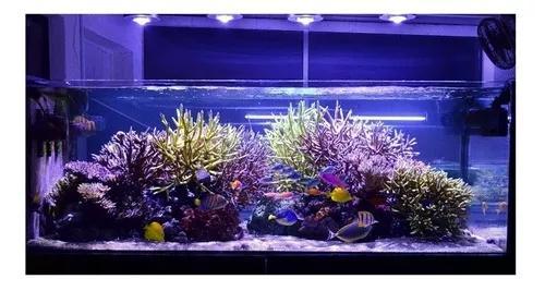 Kit lâmpada barra tubo led iluminação aquário peixes