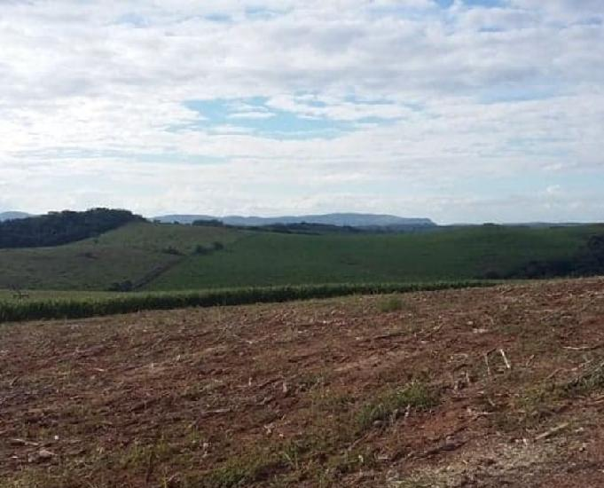 Excelente fazenda grãos região de carrancassão vicente