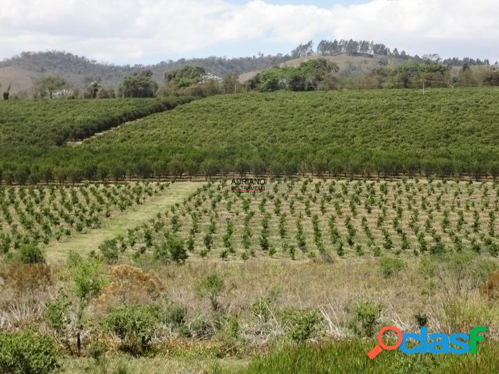 Fazenda com 248 alqueires - serra negra - sp