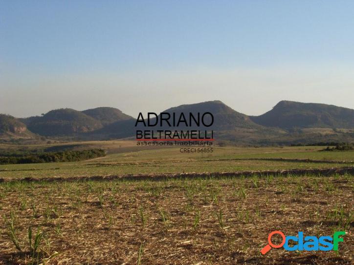 Fazenda - 325,67 hectares - cajuru/sp