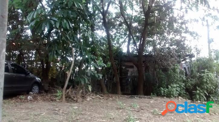 Terreno em pirituba/vila clarice 1430 m² estuda parceria