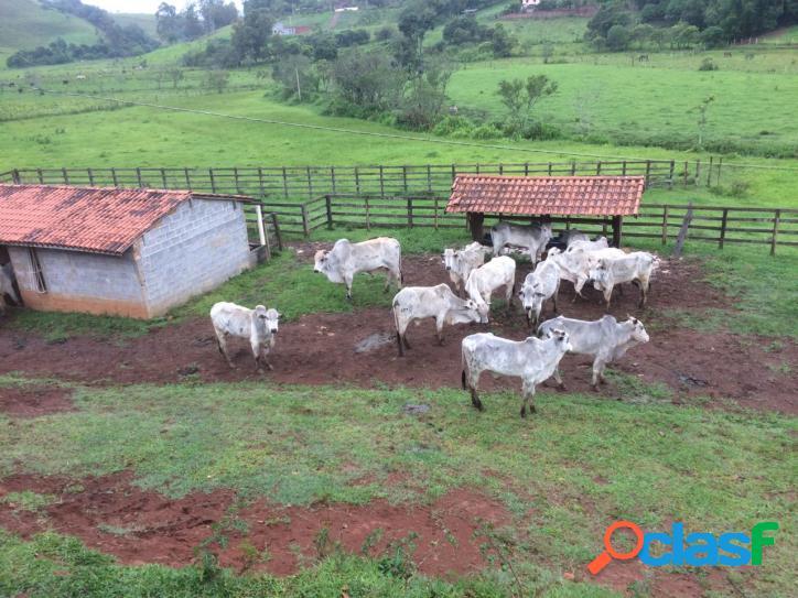 Oportunidade de fazenda com possibilidade para loteamento.