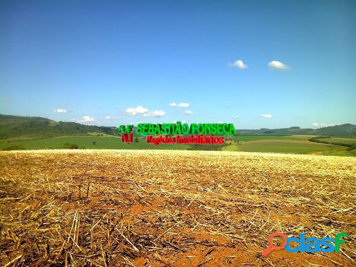 fazenda muito produtiva em minas Gerais - Investimento