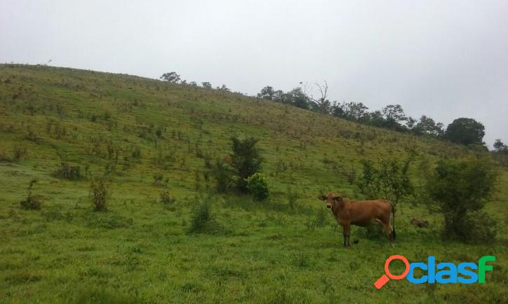 Fazenda - sítio em meio a natureza de paraibuna - terra boa