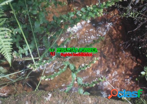 Sítio com riacho - águas cristalina 15 km de São Lourenço-MG 1