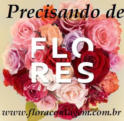 Bouquet de flores em bh, www.floracontagem.com.br
