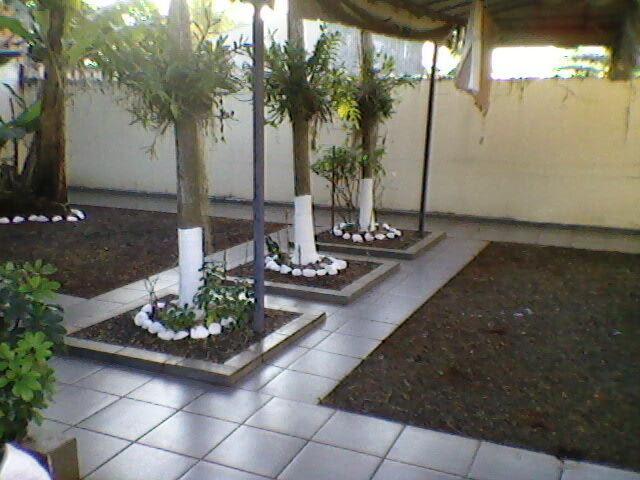 Consultoria em jardinagens e paisagismo londrina -