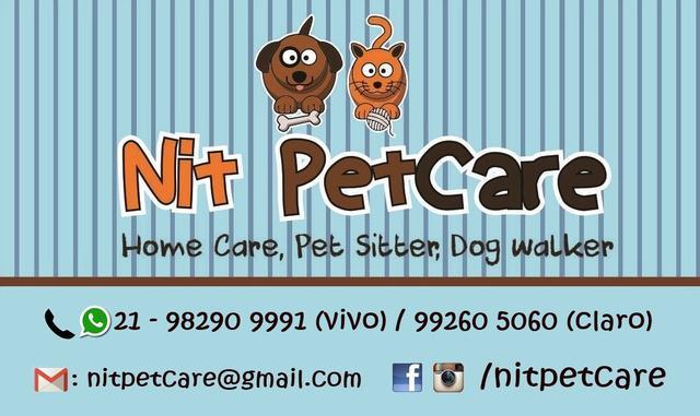 Dog walker e pet sitter- niterói
