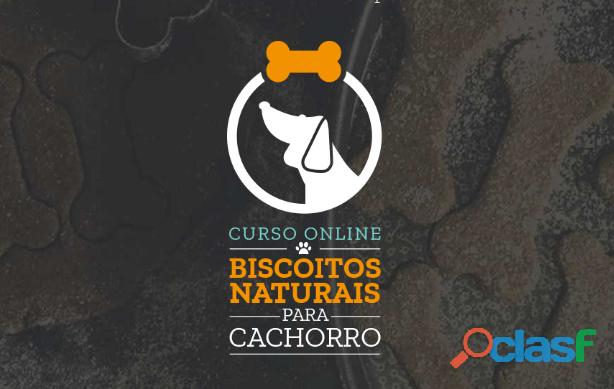 Curso online biscoitos naturais