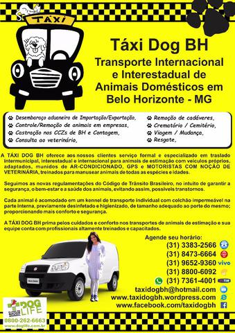 Transporte internacional e interestadual de animais