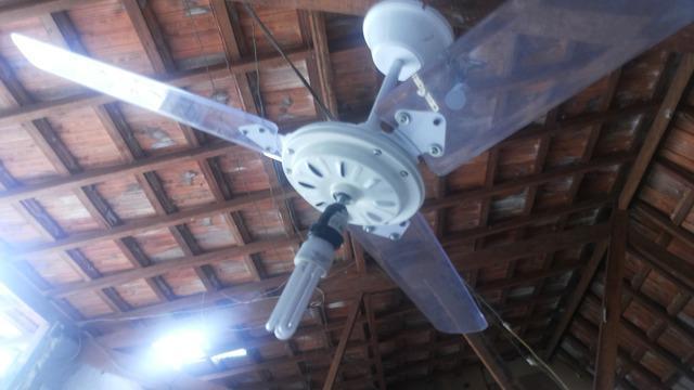 Ventilador teto 220volts