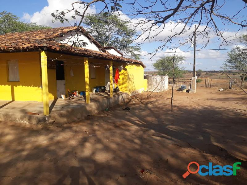 Propriedade de 31 hectares, com casa sede, em Apoti PE
