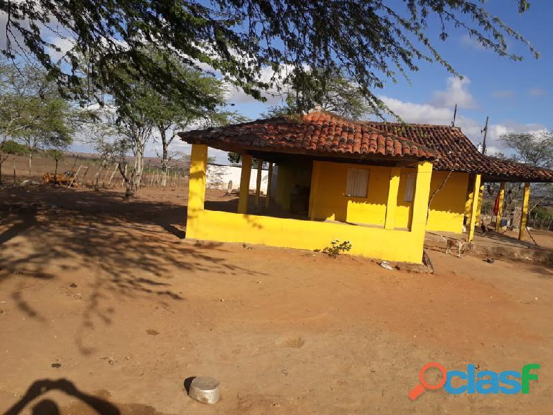 Propriedade de 31 hectares, com casa sede, em Apoti PE 1