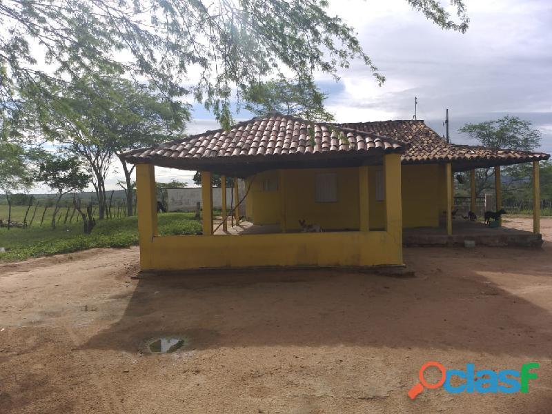 Propriedade de 31 hectares, com casa sede, em Apoti PE 2