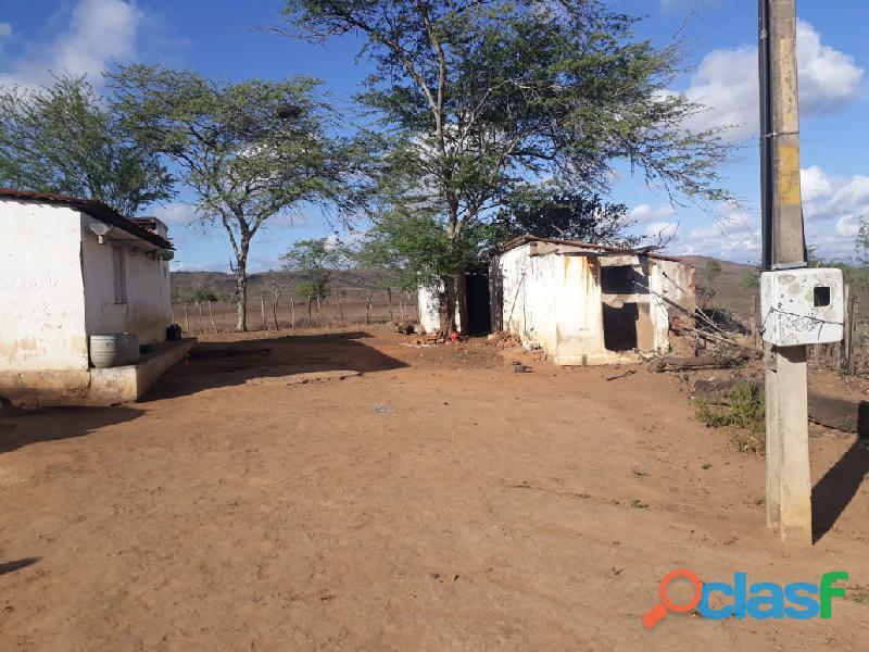 Propriedade de 31 hectares, com casa sede, em Apoti PE 3