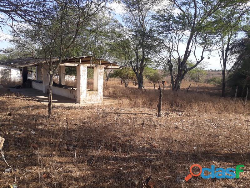 Propriedade de 31 hectares, com casa sede, em Apoti PE 4