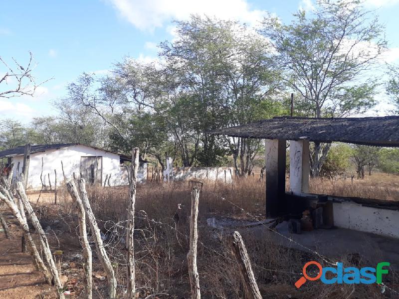 Propriedade de 31 hectares, com casa sede, em Apoti PE 5