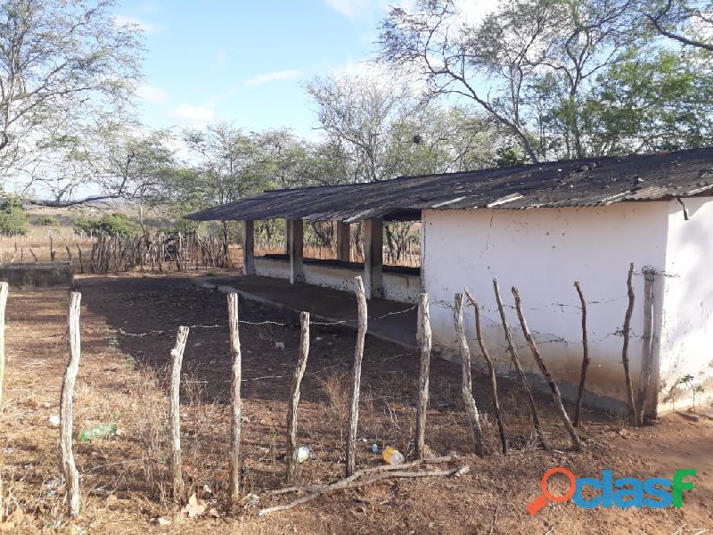 Propriedade de 31 hectares, com casa sede, em Apoti PE 6