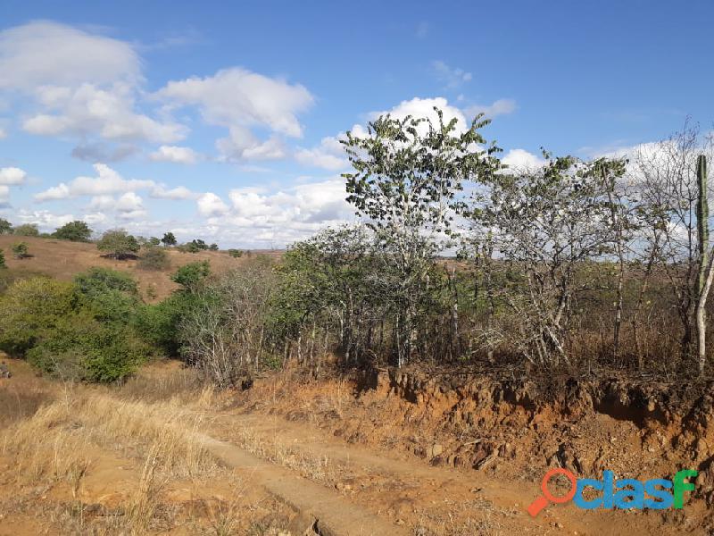 Propriedade de 31 hectares, com casa sede, em Apoti PE 7