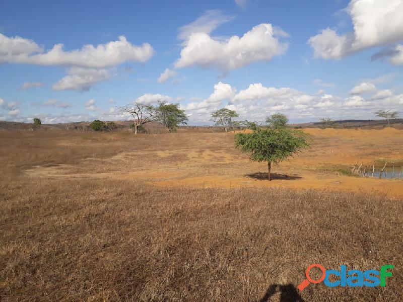 Propriedade de 31 hectares, com casa sede, em Apoti PE 8