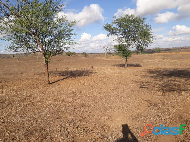 Propriedade de 31 hectares, com casa sede, em Apoti PE 9