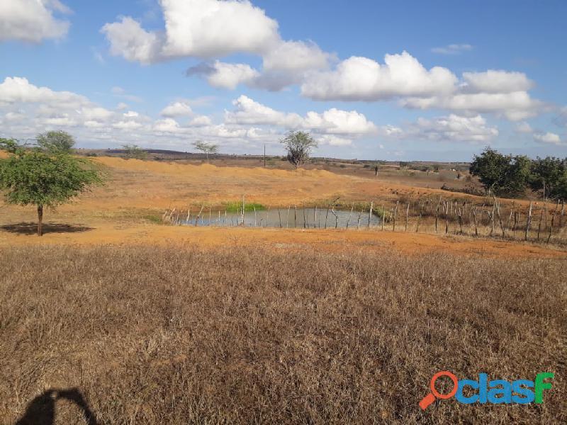 Propriedade de 31 hectares, com casa sede, em Apoti PE 10