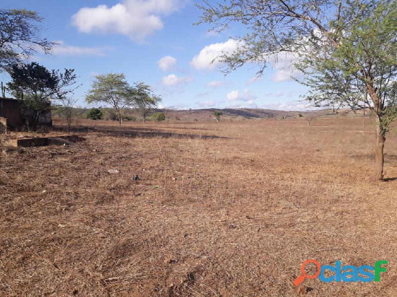 Propriedade de 31 hectares, com casa sede, em Apoti PE 11