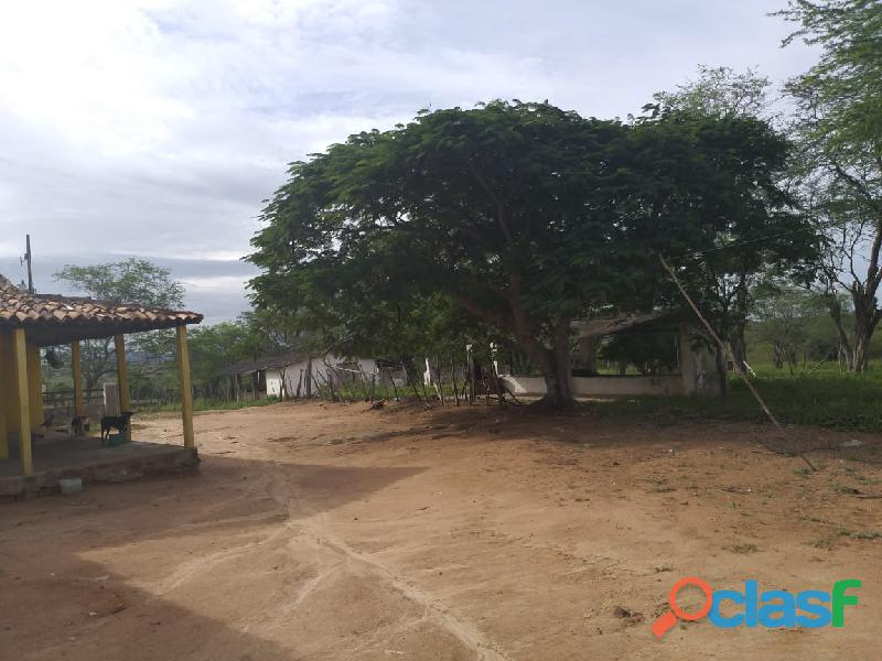 Propriedade de 31 hectares, com casa sede, em Apoti PE 14