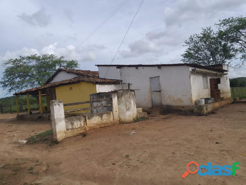 Propriedade de 31 hectares, com casa sede, em Apoti PE 16