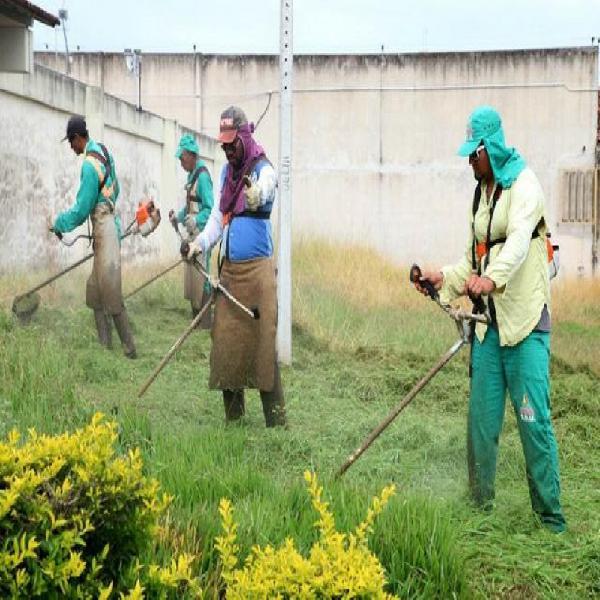 Podas de gramas e serviços de paisagismo e jardinagem
