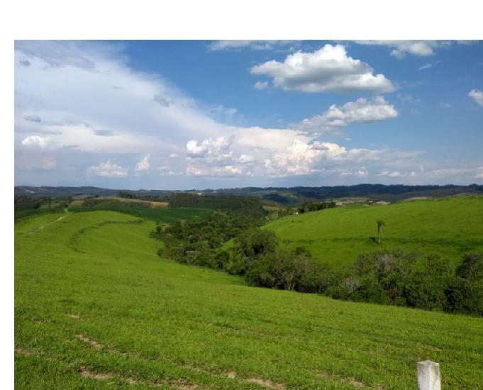 Fazenda 194 hectares pecuária e lavoura
