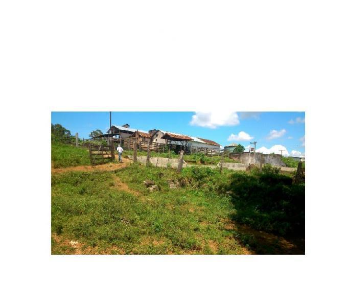 Fazenda formada região pouso alegre 236 hectares gado