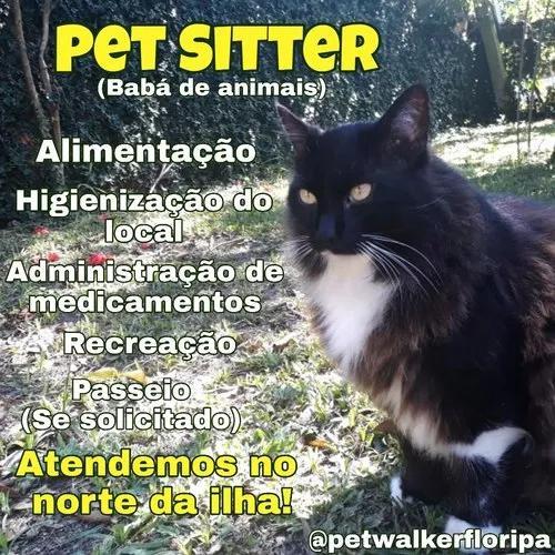 Babá de animais/passeador de cães