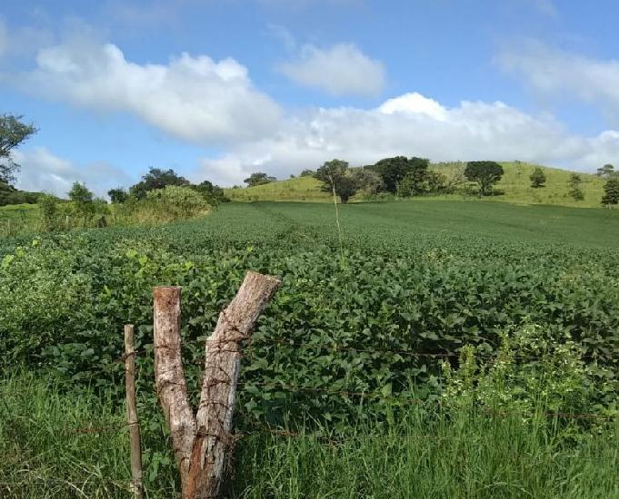 Excelente fazenda com 89 alqueires região barbosa ferraz pr