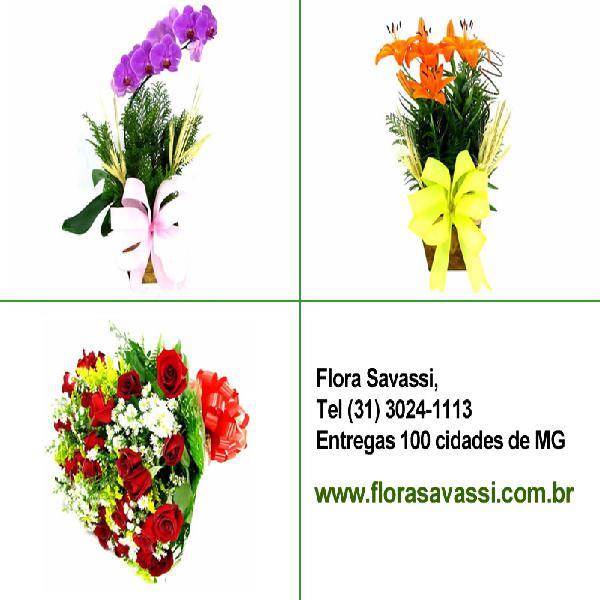 Venda nova bh floricultura entrega em venda nova belo