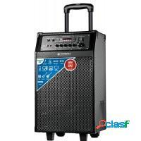 Caixa de som amplificada mondial 60w usb sd card f