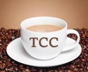 Tcc monografia formatação slides português