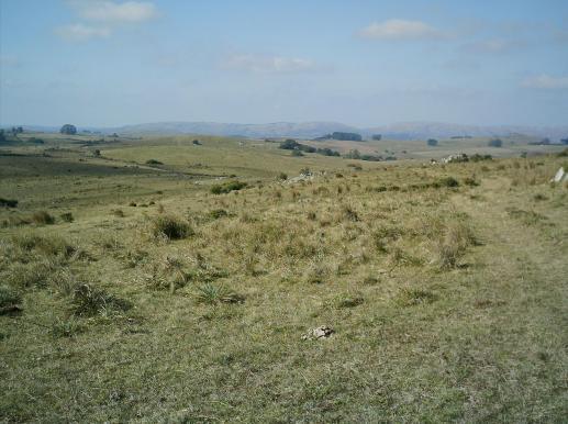 Se vende - hermoso campo en sierras - uruguay