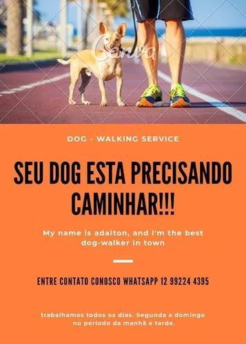 Dog walker caminhando seu cachorro