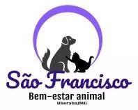Pet sitter - dog walking - passeio e cuidados de animais