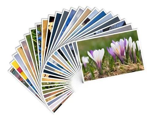 Revelação de 200 fotos digitais 15x20 fosco/brilho
