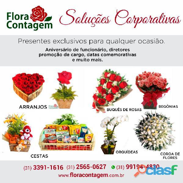 Floriculturas em contagem