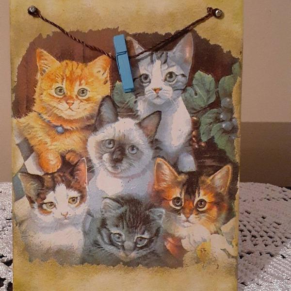 Porta recado para geladeira de gatos