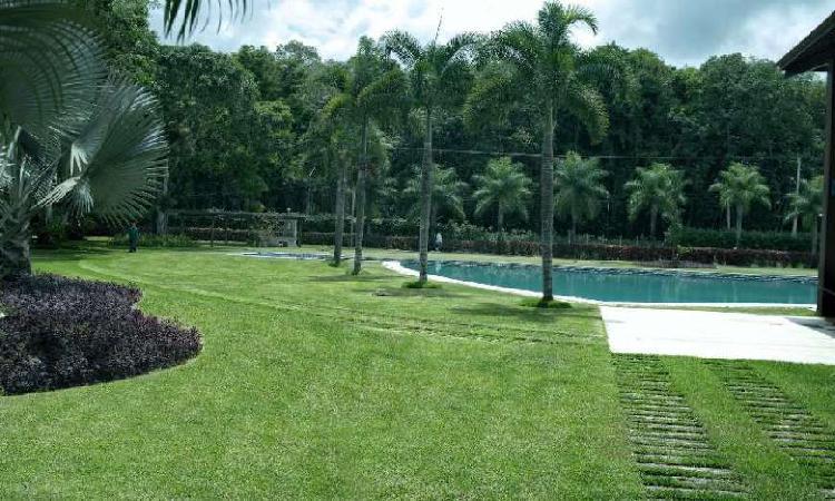Lote/terreno à venda, 620 m² por r$ 200.000 cod. 19950382