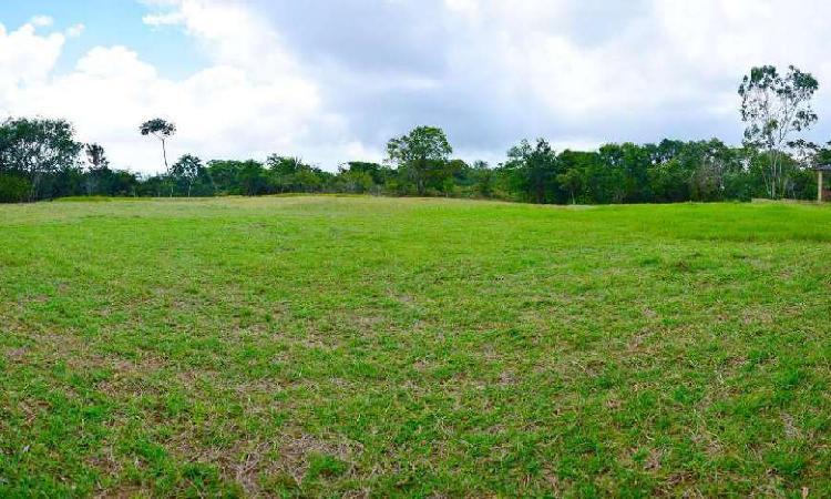 Lote/terreno com 6 quartos à venda, 30000 m² por r$