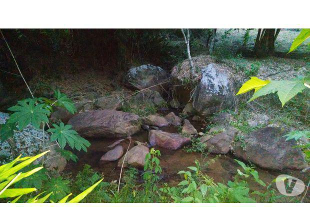 Monte verde - terreno na serra, muita água cristalina.
