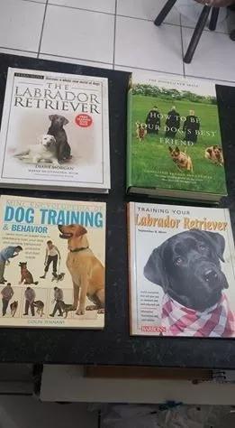 Livros dog training/labrador retriever/how to be your dog...