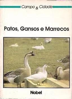 Patos, gansos e marrecos (campo e cidade s